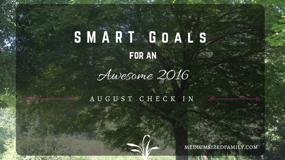 My S.M.A.R.T Yearly Goals: August Check In