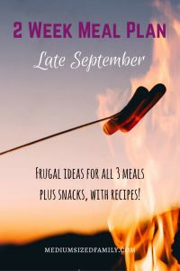 2 Week Meal Plan for Late September. Here's a 2 week meal plan that includes all 3 meals, snacks, and desserts. It has links to recipes and everything you need for a complete, simple meal plan.