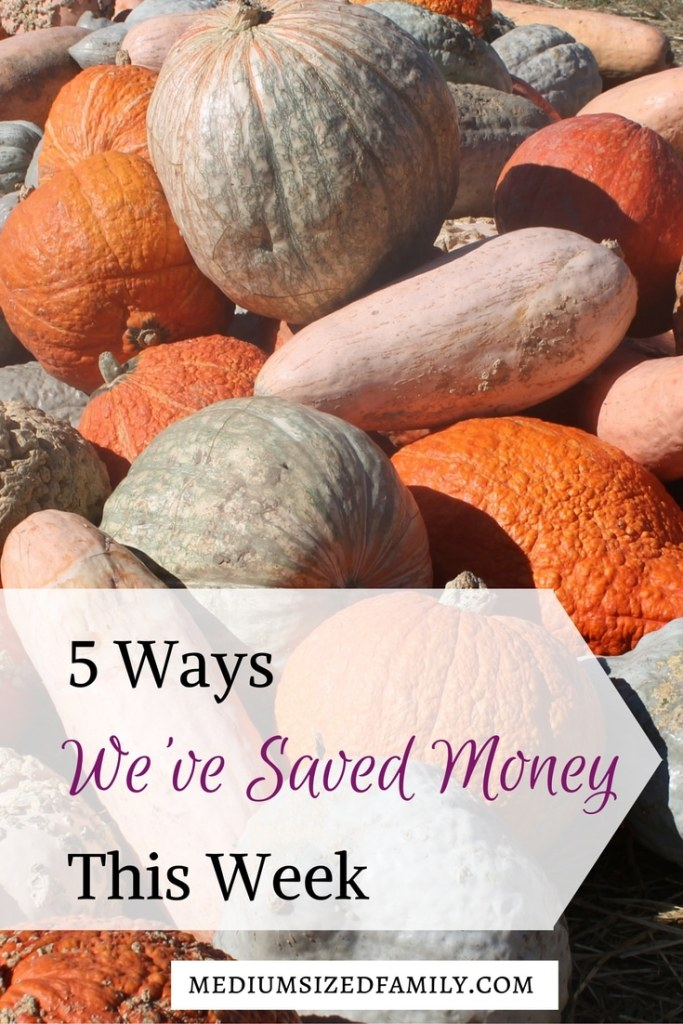 5 Ways We've Saved Money This Week. A whole series of posts on how this family saved money. Get tons of frugal tips, including how to save on birthday parties and afford fun family traditions.