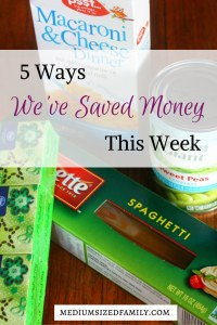 5 Ways We've Saved Money This Week 58 - An entire series of money saving tips.