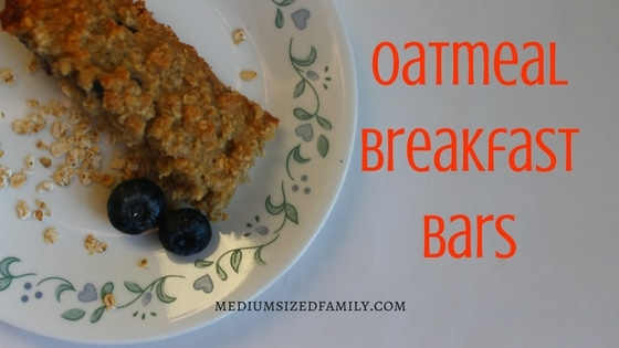 Easy Oatmeal Breakfast Bars: A Frugal, Homemade Snack On the Go
