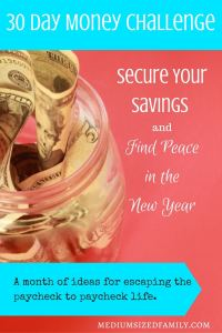 Secure Your Savings and Find Peace in the New Year, a 30 Day Money Challenge. Looking for a new year challenge that will set your 2017 up for a great start? This money challenge will help you escape paycheck to paycheck living by giving you the means to set up your sinking funds and/or emergency funds. You'll be ready to tackle whatever this year throws your way!