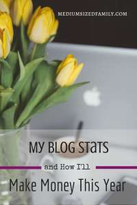 The Truth About My Blog Stats and How I'll Make Money This Year I'm writing SMART goals for my blog. Learn my plan to boost my traffic so I can earn more blog income this year.