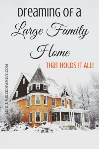 Dreaming of a Breathtaking Large Family Home That Holds It All?  Get large family home ideas for your dream file here.  I especially love the extra shower idea!