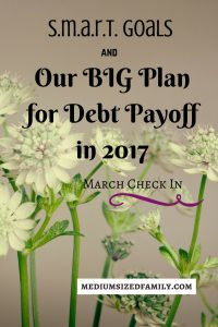 Check out our SMART goals that will help us pay off debt this year!
