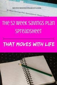 I needed a savings plan spreadsheet that wasn't so hard to keep up with. This one moves with me. If I have a bad week, it shows me how to get on track. Waaaay easier to use!