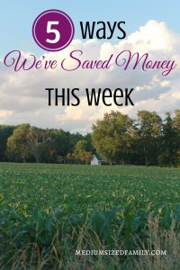 Ways to save money...especially when you can avoid spending any money at all!