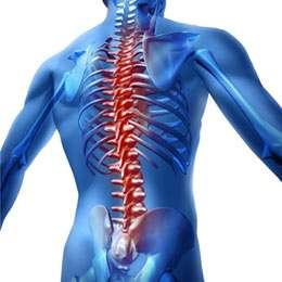Biomécanique de l'os. Application au traitement des fractures