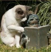Čitanje knjiga je  kao i branje gljiva