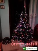 Čestit Božić želi vam medjimurje.info