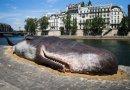 U Parizu na obali Seine nasukan kit