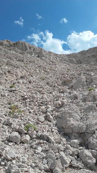 pogled na vrh