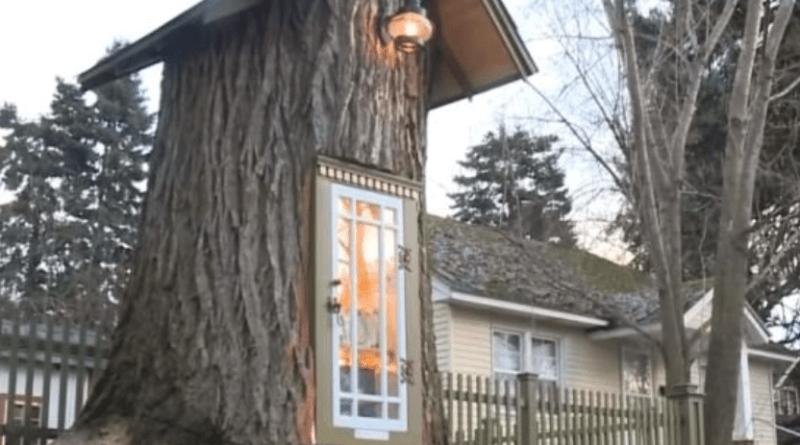 U 110 godina starom drvu nastala je najoriginalnija i najslađa knjižara ikada