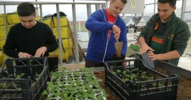 Srednjoškolci vraćaju u šumu divlje sorte voćki