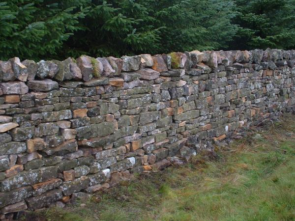 Dry Stone Wall Seminar In Donegal - Med Partnership Group