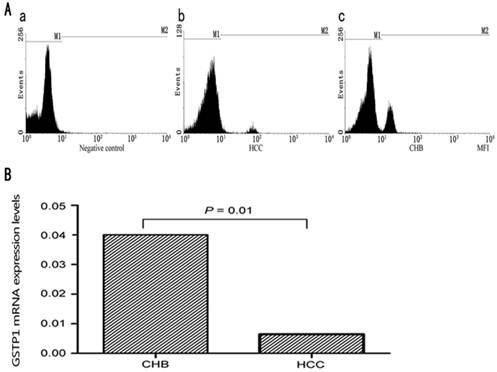 Glutathione S-Transferase P1 Correlated with Oxidative