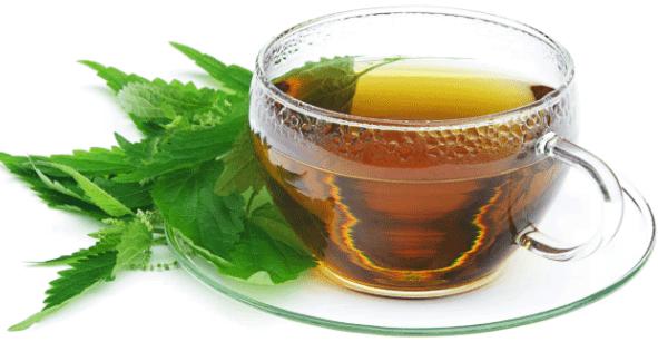 чай из мяты при рините
