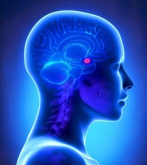 Болезнь Иценко — Кушинга, превышение гормона АКТГ