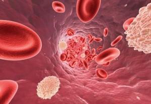 как поднять лейкоциты