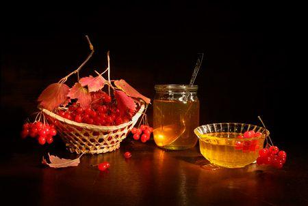 Калина с медом для лечения вирусного бронхита