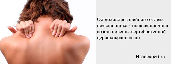 Остеохондроз шейного отдела позвоночника - главная причина вертеброгенной цервикокраниалгии