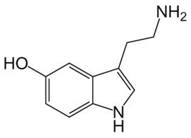 Гормон серотонин