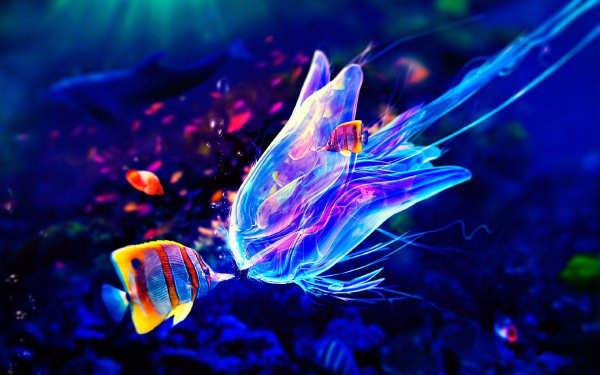 Medusa 3D en colores de nen  Imgenes y fotos