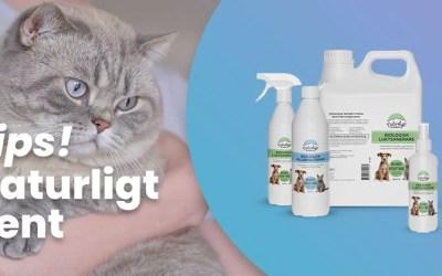 Rengör med naturliga microorganismer – perfekt för kattägare
