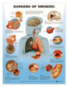 Dangers of smoking chart also medwest medical supplies rh