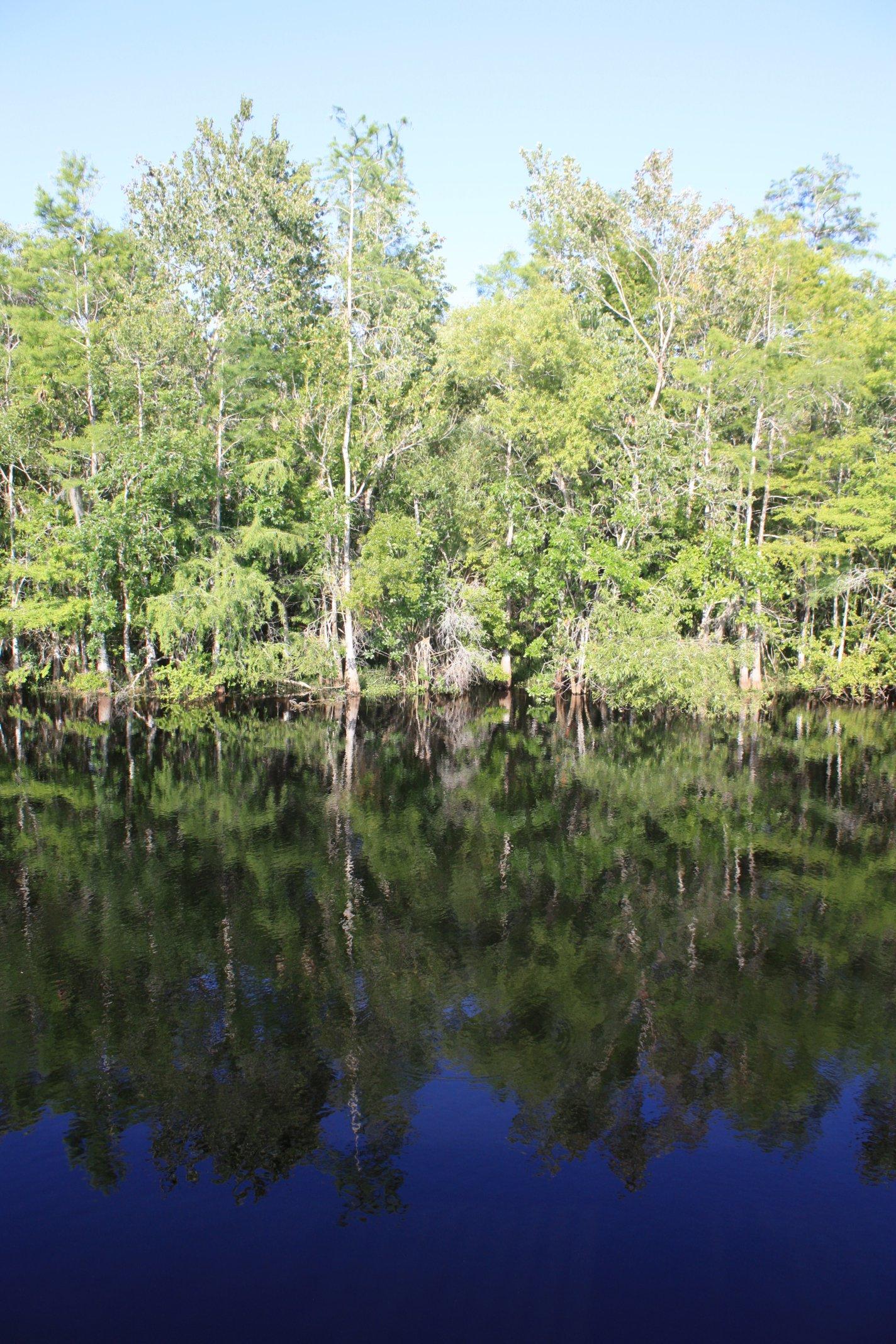 Florida Auf dem Tamiami Trail durch die Everglades