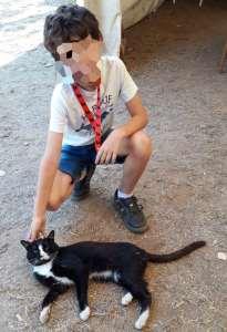 III Jamón Jugón. Mi peque y su nuevo amigo el gato