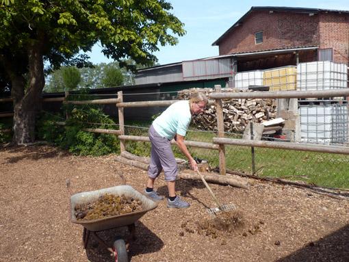 Anne beim abäppeln