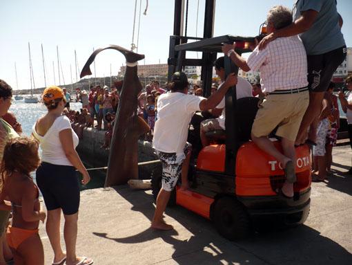 Vier Mann auf dem Gapelstapler für den dicken Hai über die Kante zu heben