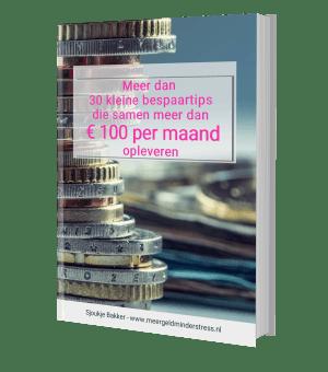 E-book Meer dan 30 kleine bespaartips die samen meer dan € 100 per maand opleveren