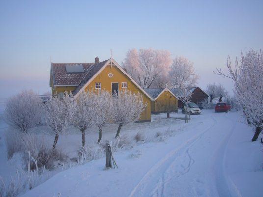 05 In de sneeuw