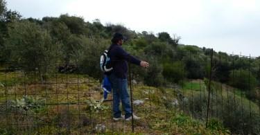 In ancient Elyros Crete