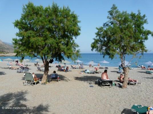 Nature provides some shadow...at Gialiskari beaches Paleochora Crete