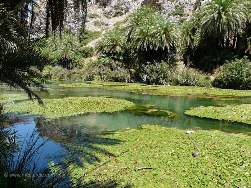 Preveli palm beach - The river Megas Potamos in Preveli Crete