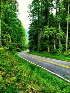 North Carolina Mountain Road
