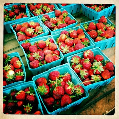 The Betty Crocker Project : Adventures with Strawberries & Rhubarb