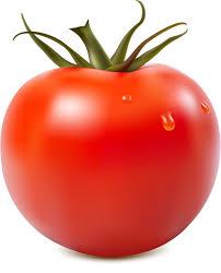 妊婦 トマト