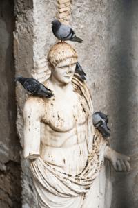 vogeloverlast door duiven op kerkbeeld