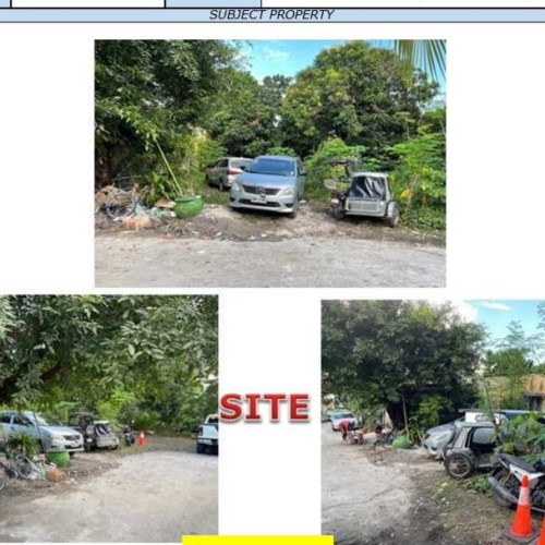 Bank Foreclosed, vacant lot, VERMILLION STREET, CAMELLA SPRINGVILLE CENTRAL PHASE 1, BRGY. MOLINO, BACOOR, CAVITE - Image 1