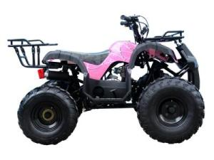 Shop for ATV081 110cc ATV  Lowest Price, Great Customer Support, Free PDI, Safe and Trusted