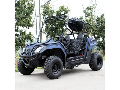 Safari DF200GK-H UTV