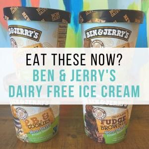 Ben & Jerry's Dairy Free Ice Cream Taste Test