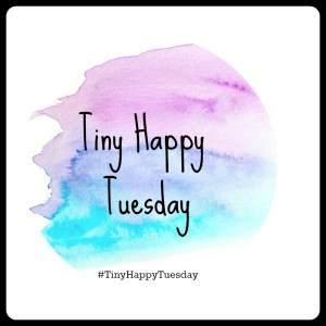 Tiny Happy Tuesday