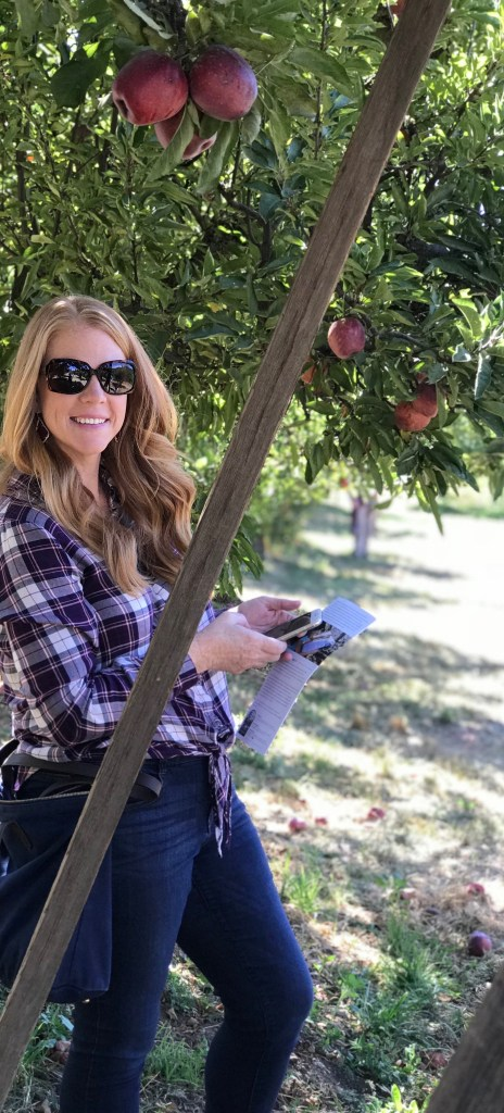 Where to go Apple Picking in Southern California - We're chatting all about the best spots to go apple picking in Southern California, specifically around Orange County. We're including the best spots for a fall photoshoot to get great pictures, as well as fun things to do with your kids while you're there.