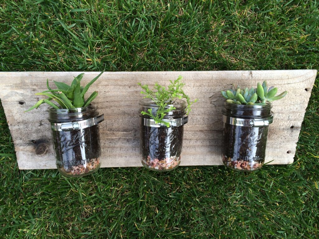 Even the blackest thumb can put together these mason jar succulent planters. See how I turned these into hanging mason jars with some reclaimed wood.