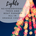Christmas Lights in Orange County